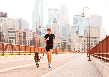 Dog-running-leash