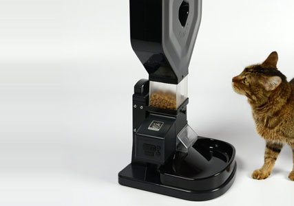 Automatic-cat-food-dispenser