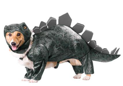 Dog dinosaur costume