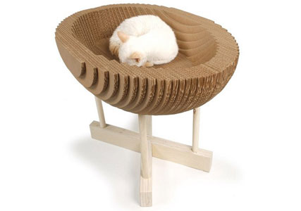cardboard cat pod bed